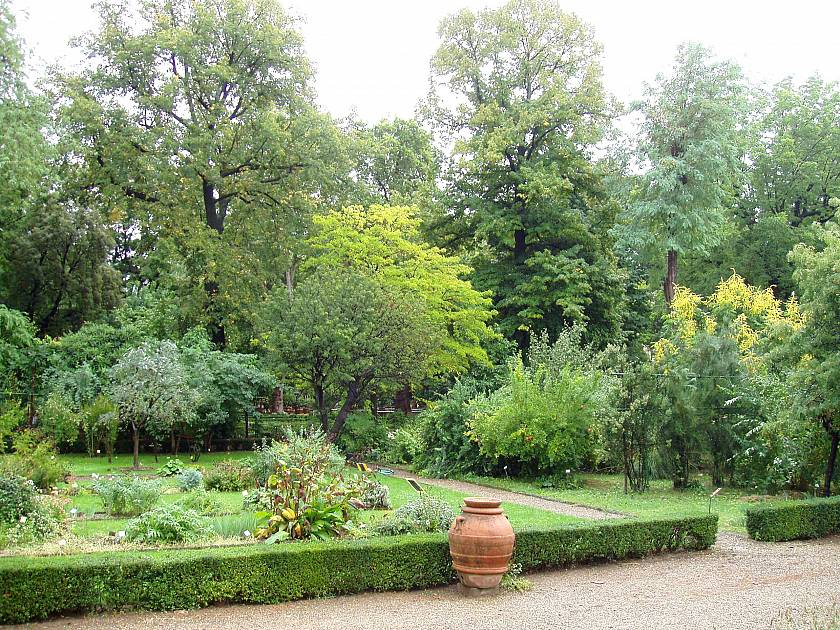 orto botanico orto botanico giardino dei semplici