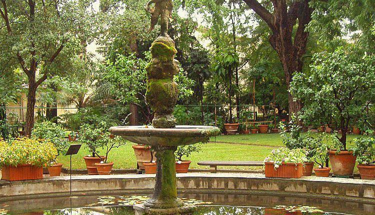 Passeggiata nei giardini storici fiorentini orto botanico for Giardino orto botanico firenze